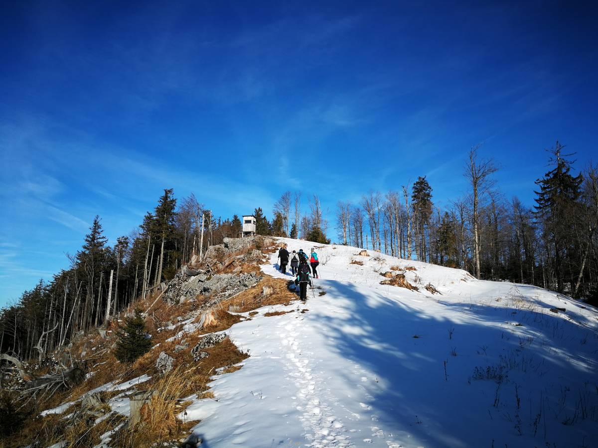 Winter NordicWalking Lidaun am 15.01.2020