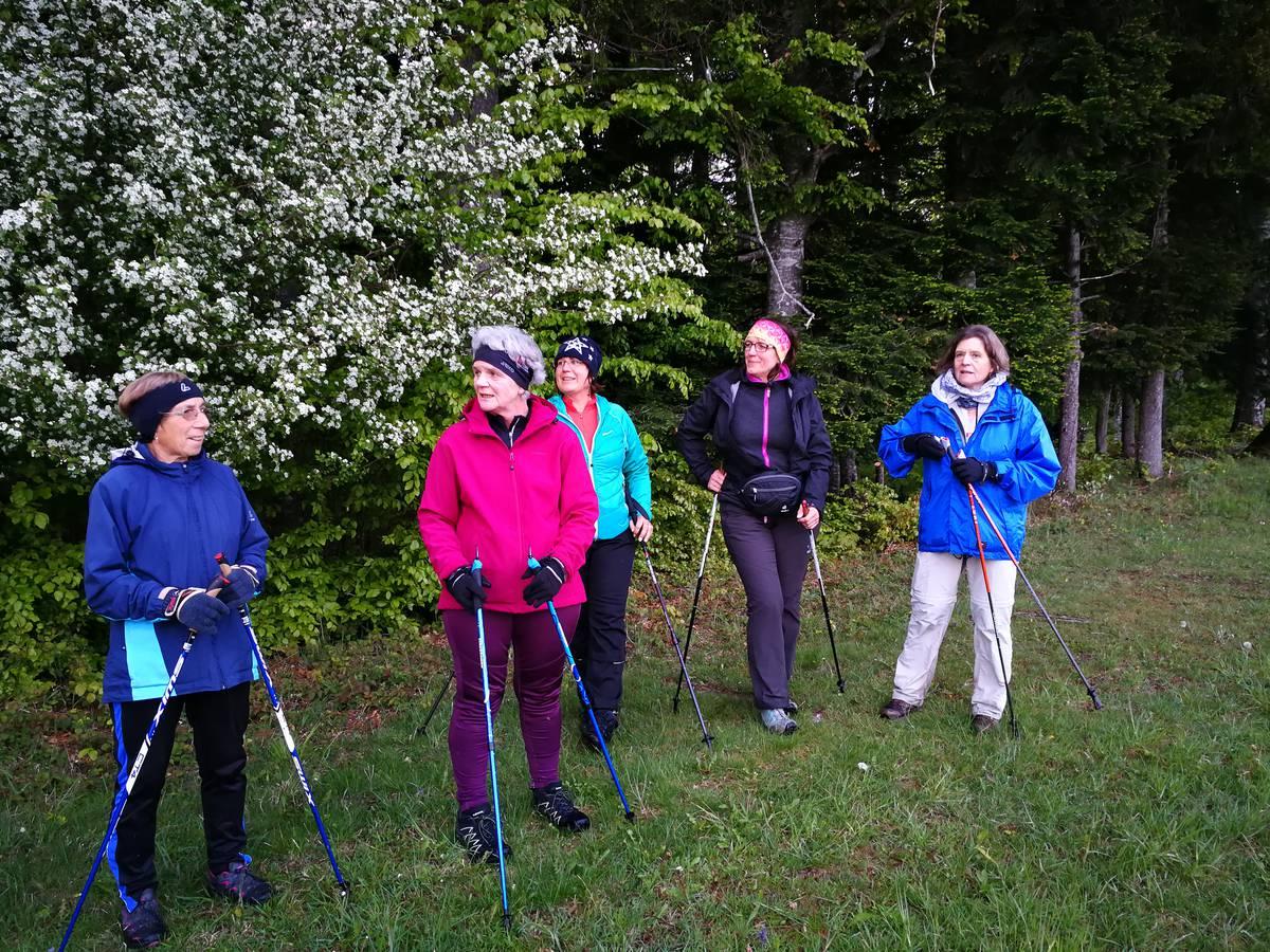 Nordic Walkingtour Thalgauegg
