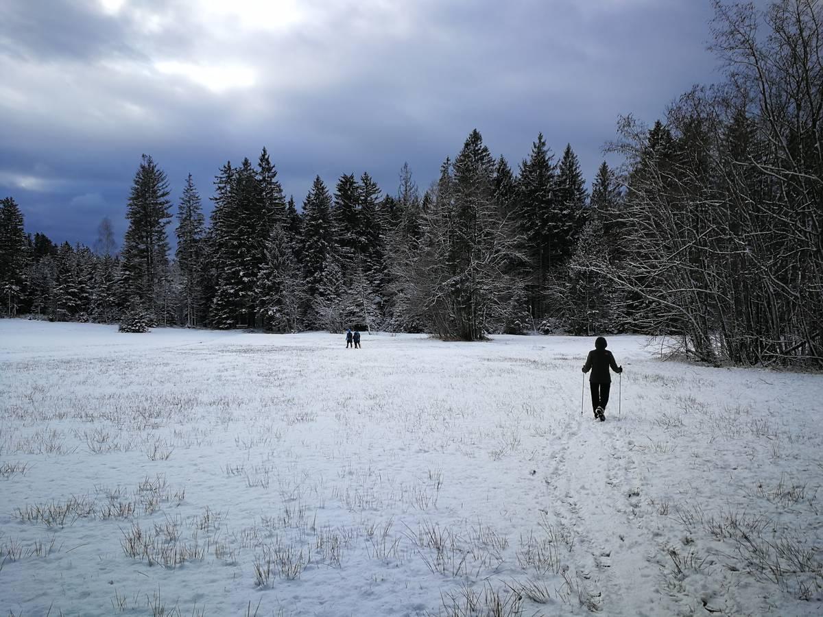 Schneeschuhwanderung Thalgauberg vom 29.01.2020