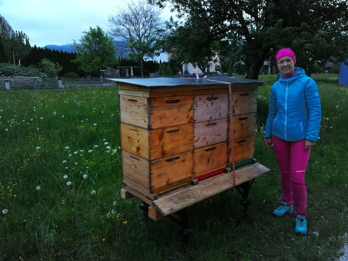 Bienenpatenschaft 'Wildblume' vom 03.04.2020
